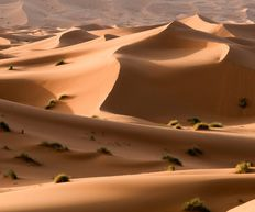 sand dunes morocco