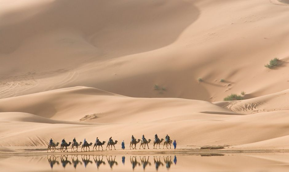 Camel trekking and walking holidays in Morocco