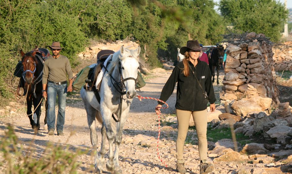 Horse riding adventures from Essaouira Morocco
