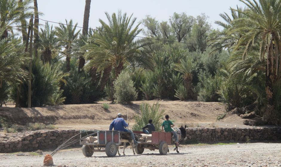 Desert adventure southern Morocco