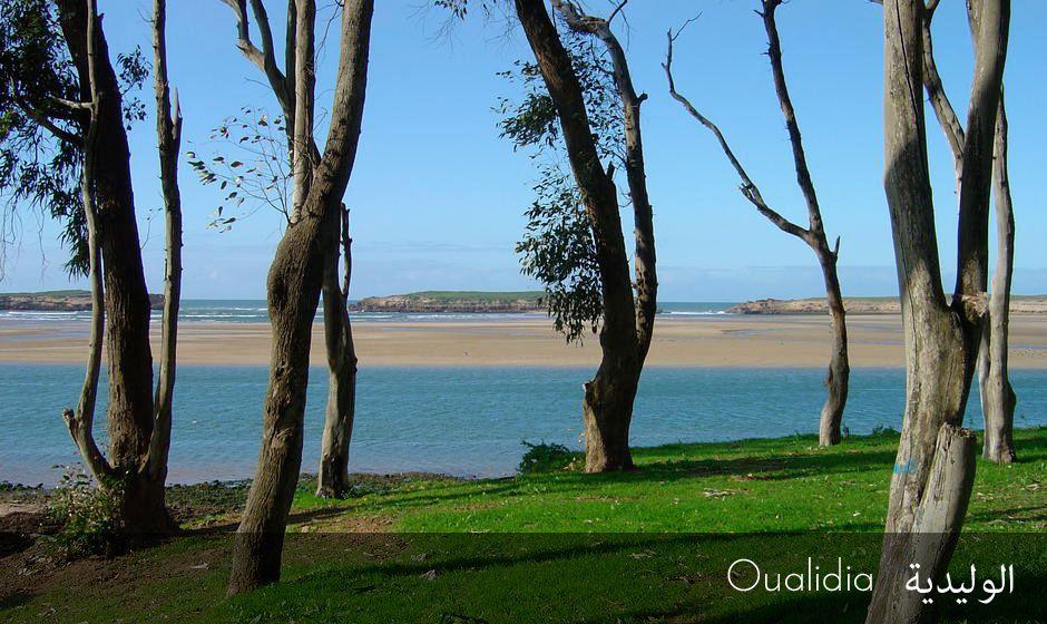 oualidia lagoon beach morocco coast hippocampe sultana