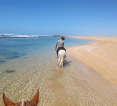 Horse riding in Oualidia on the Atlantic coast of Morocco